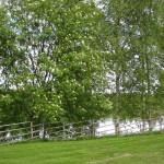 Näkymä Oulujoelle